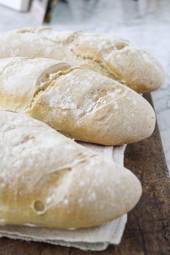Filoni di pane